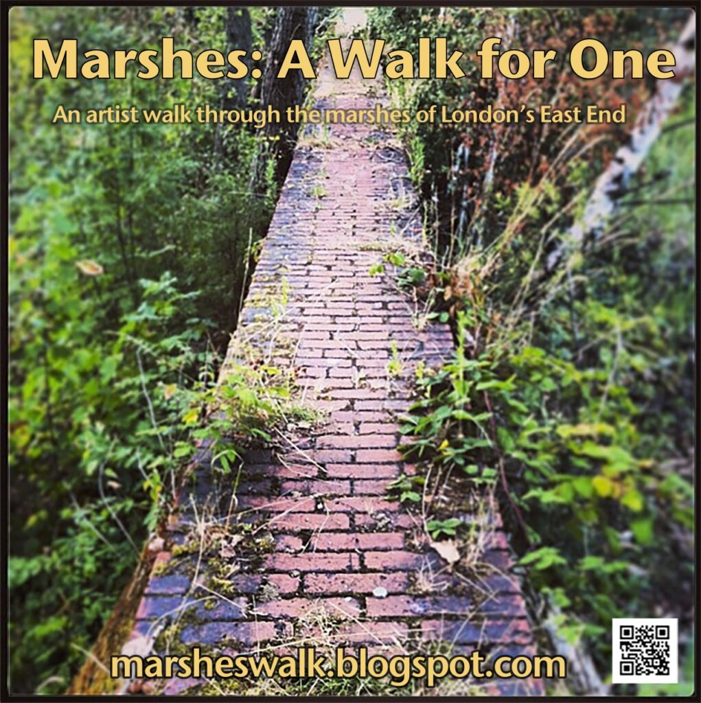 Marshes: A Walk for One